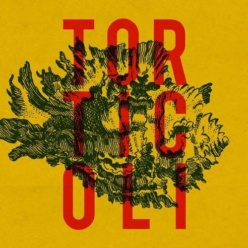 Torticoli's avatar
