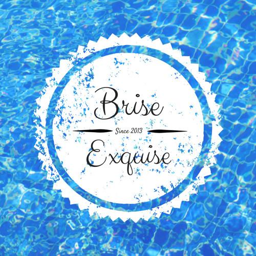 Brise Exquise's avatar