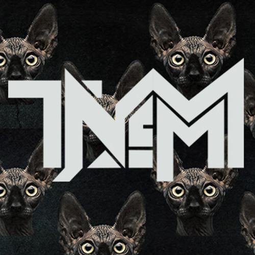 TNEM's avatar