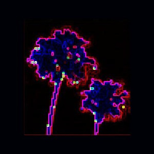 Californian Debris's avatar