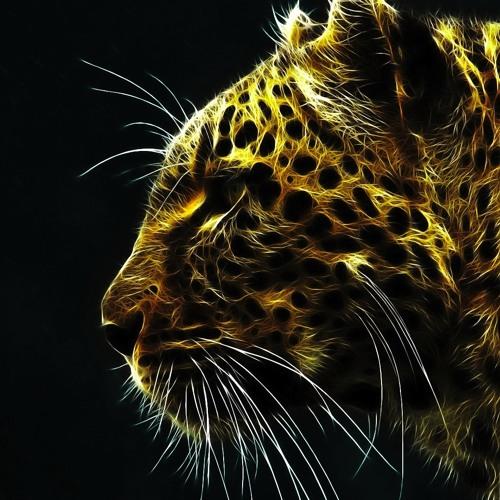 Cheetahs's avatar
