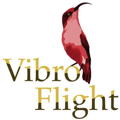 Vibroflight's avatar