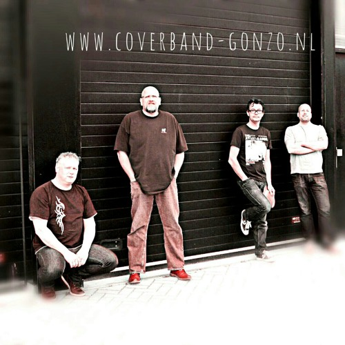 Coverband Gonzo!'s avatar