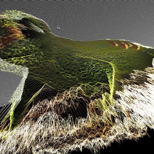 LoFiGecko's avatar