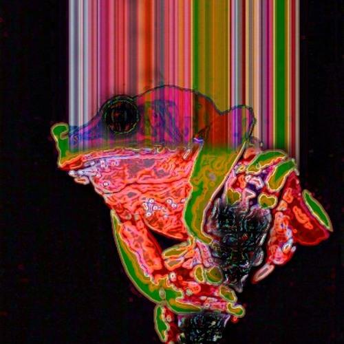 Phyllomedusa Bicolor's avatar