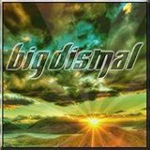 Big Dismal 2015's avatar