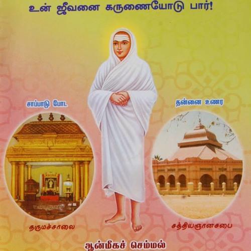 Thanga Joythi Gnana Sabai's avatar