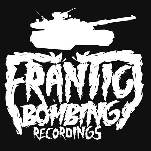 Frantic Bombing Rec's avatar