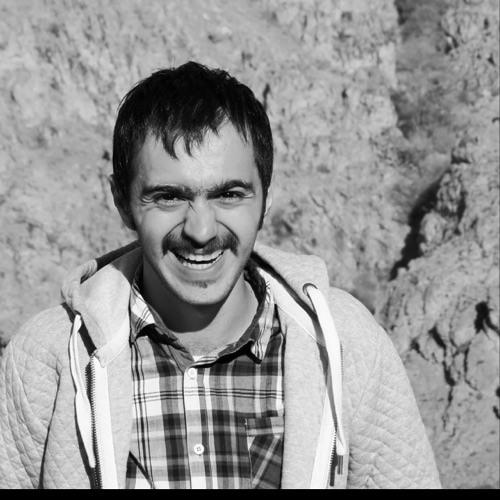 Ali Babaie's avatar
