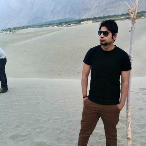 Bilal Zulfiqar 1's avatar