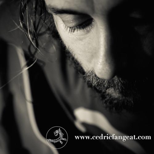 Cedric Fangeat's avatar