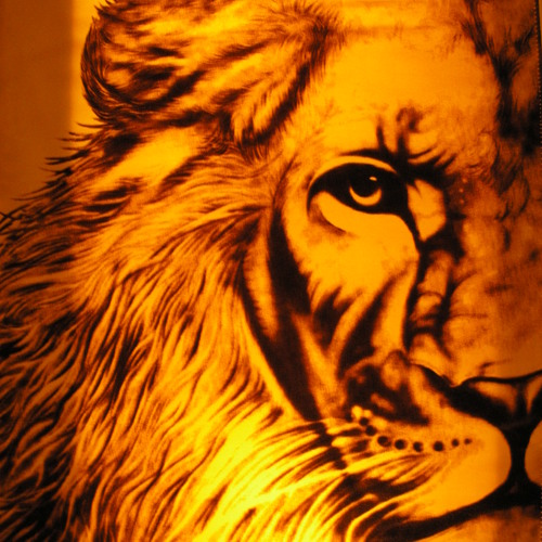 Beck Lion's avatar