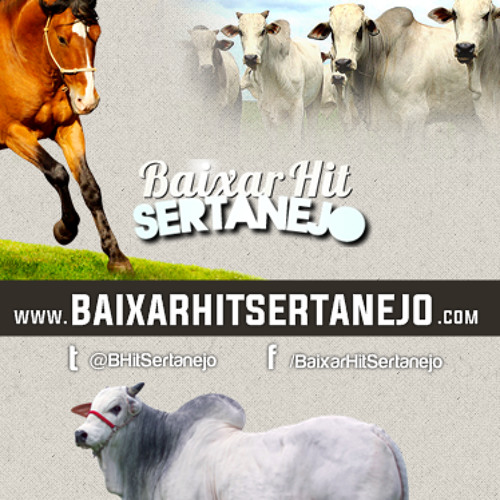 BaixarHitSertanejo's avatar