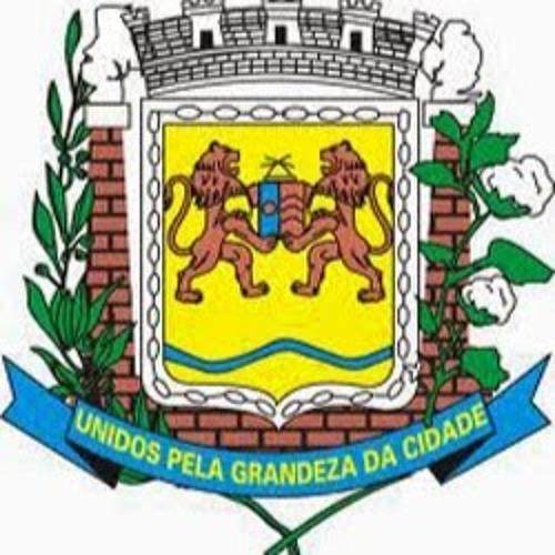 Câmara Fernandópolis's avatar