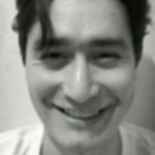 Guillermo Gomez Huertas's avatar