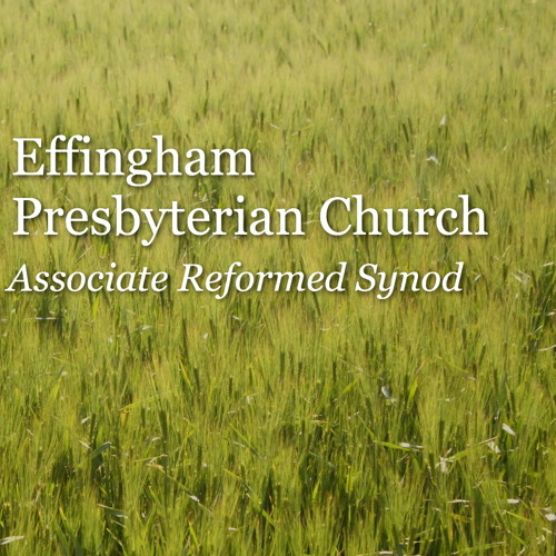 Effingham ARP's avatar