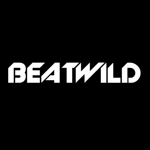 BEATWILD's avatar