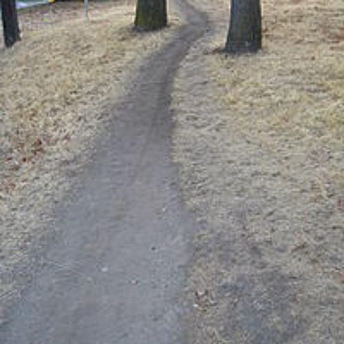Desire Paths's avatar