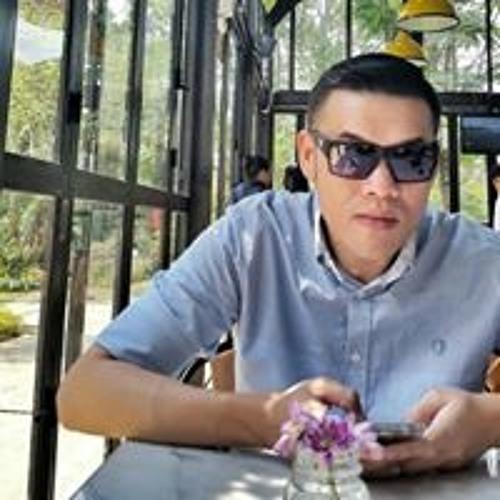 Ivan Marchius's avatar