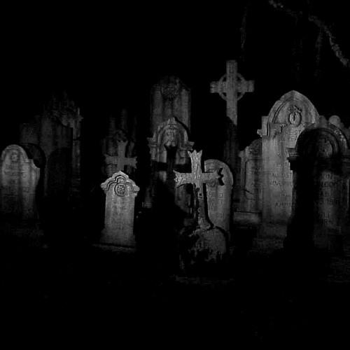 x Graveyard x's avatar