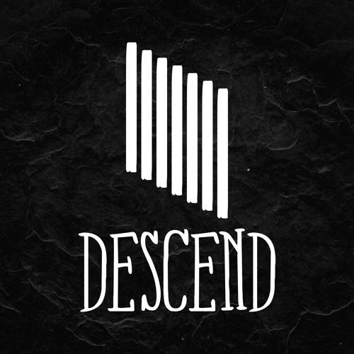 Descend Recordings's avatar