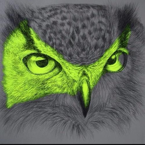 scha-ke's avatar