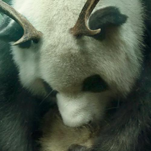 Tooonyo's avatar