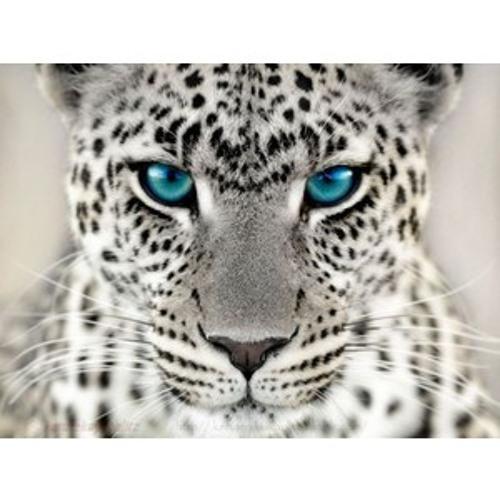 Dj Numa's avatar