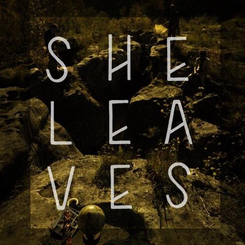 sheleaves's avatar