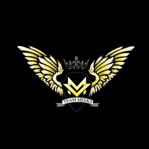 TeamMeeks's avatar