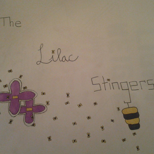 The Lilac Stingers's avatar