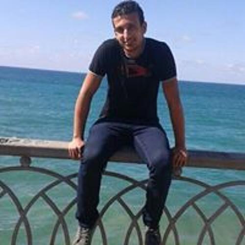 Ahmed El-Ahmedy's avatar