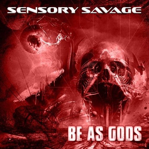 Sensory Savage's avatar