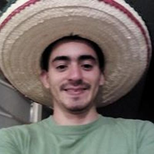 Javier Alvarez Gallegos's avatar