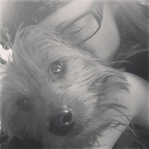 Sophie Glidden's avatar