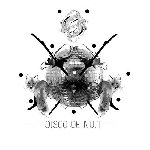 Disco De Nuit's avatar