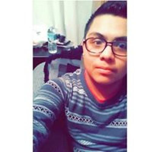 Andres El Paisaa Nunez's avatar