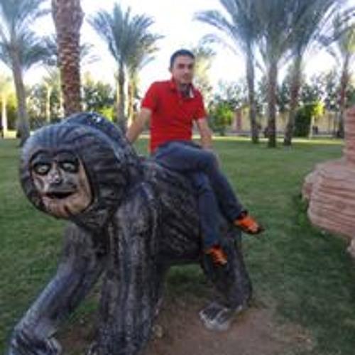 Ashraf Mohamed's avatar