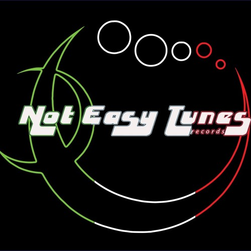 N.e.Tunes Records's avatar