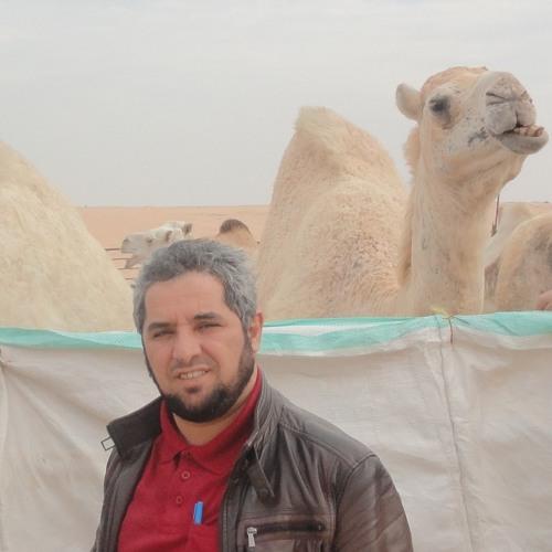 Abdulrzzak Alturkmani's avatar