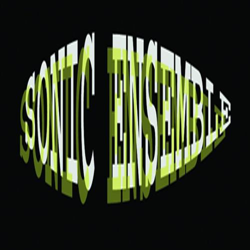 Sonic Ensemble's avatar