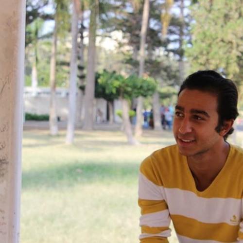 Ahmed Abd-elghany's avatar