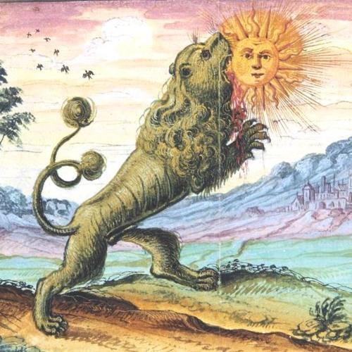 The Sun Lions's avatar