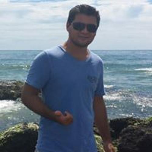 Diego de Freitas's avatar