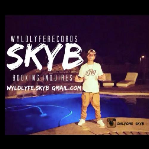 SkyB's avatar