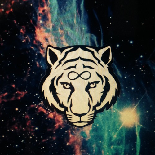 Infinity Tiger Studios's avatar