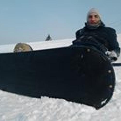 Adi Gal's avatar