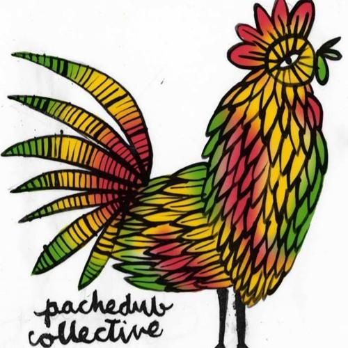 Pachedub Collective's avatar