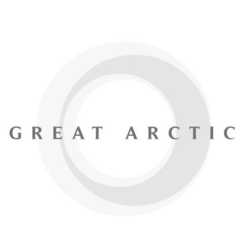 Great Arctic's avatar