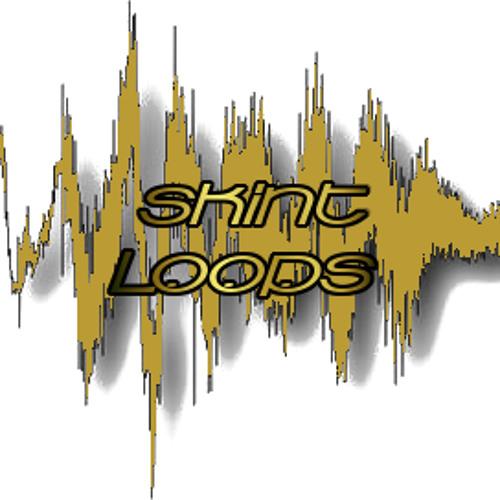 Skint Loops's avatar